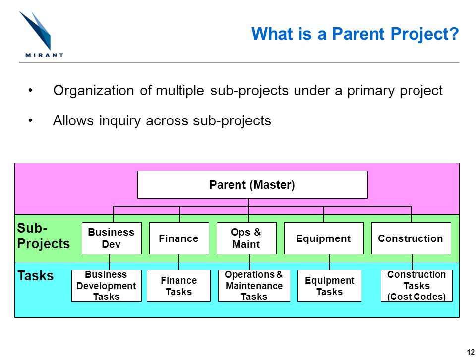 What is a Parent Project