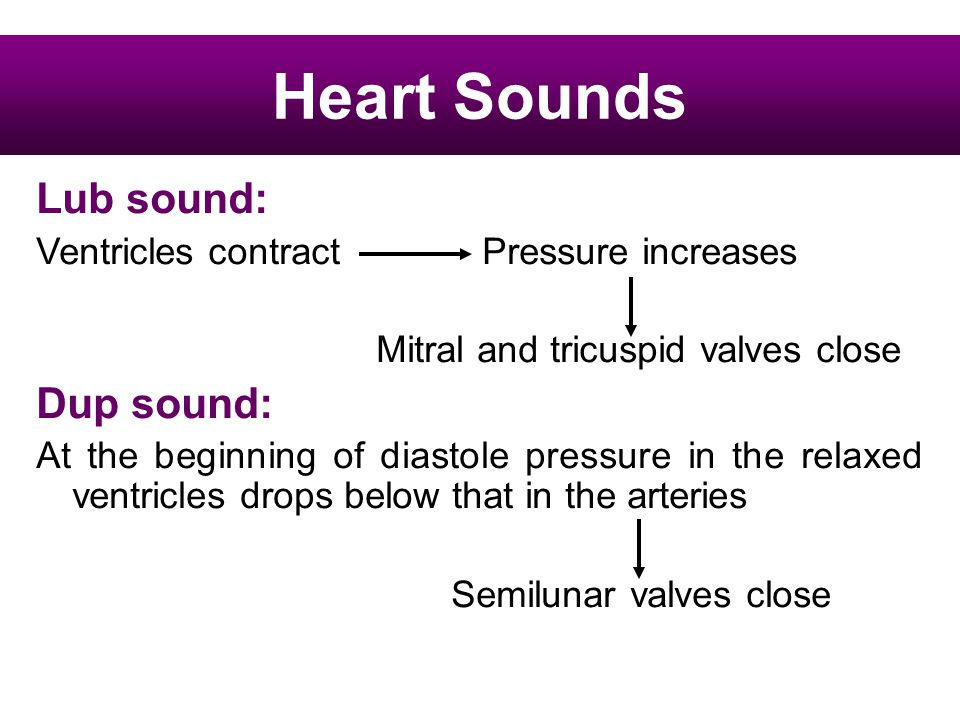 Heart Sounds Lub sound: Dup sound:
