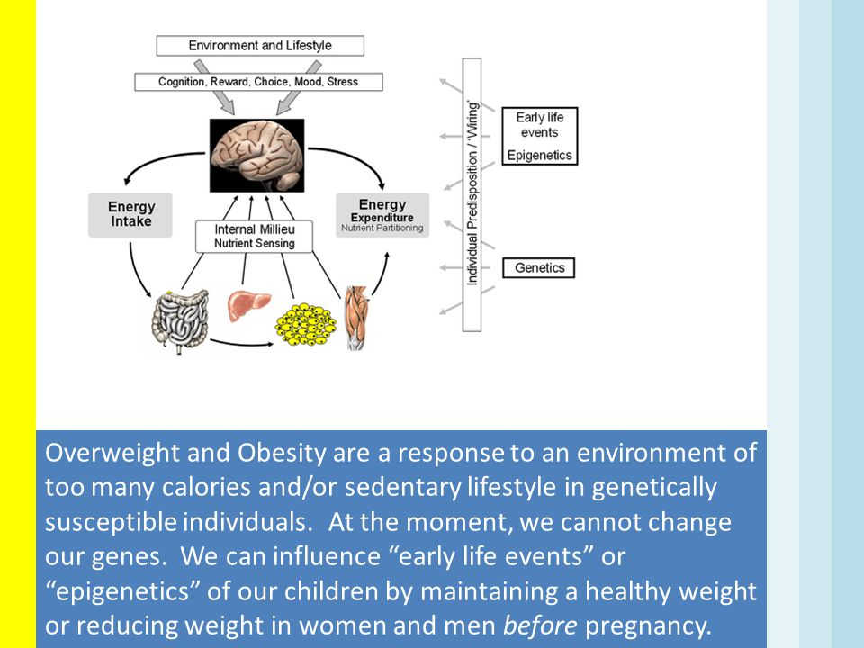 Overweight and Obesity are a response to an environment of too many calories and/or sedentary lifestyle in genetically susceptible individuals. At the moment, we cannot change our genes. We can influence early life events or epigenetics of our children by maintaining a healthy weight or reducing weight in women and men before pregnancy.