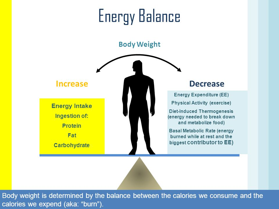Energy Expenditure (EE) Physical Activity (exercise)