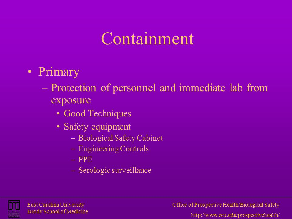 Containment Primary. Protection of personnel and immediate lab from exposure. Good Techniques. Safety equipment.