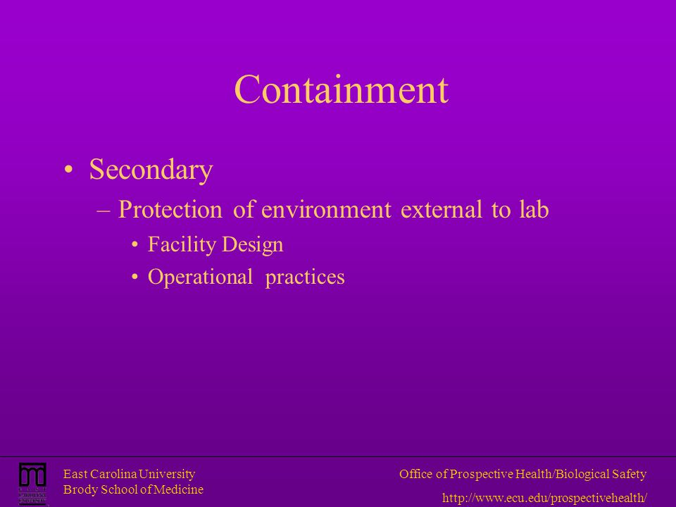Containment Secondary Protection of environment external to lab