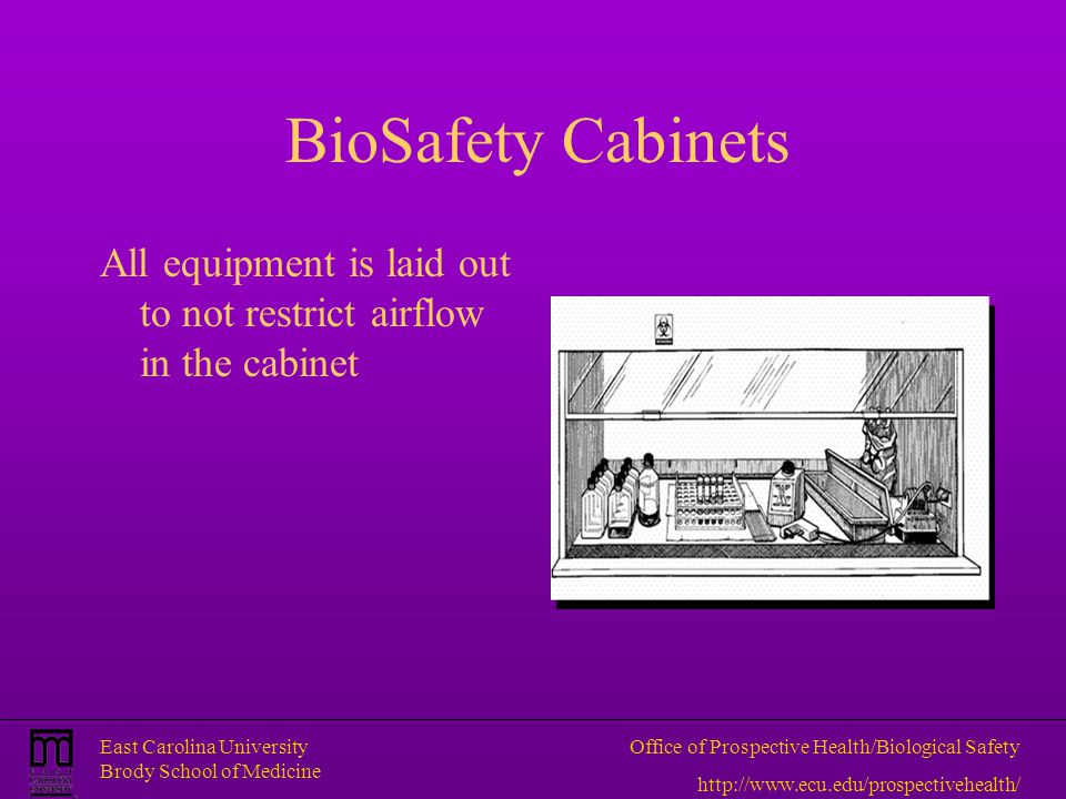 BioSafety Cabinets All equipment is laid out to not restrict airflow in the cabinet