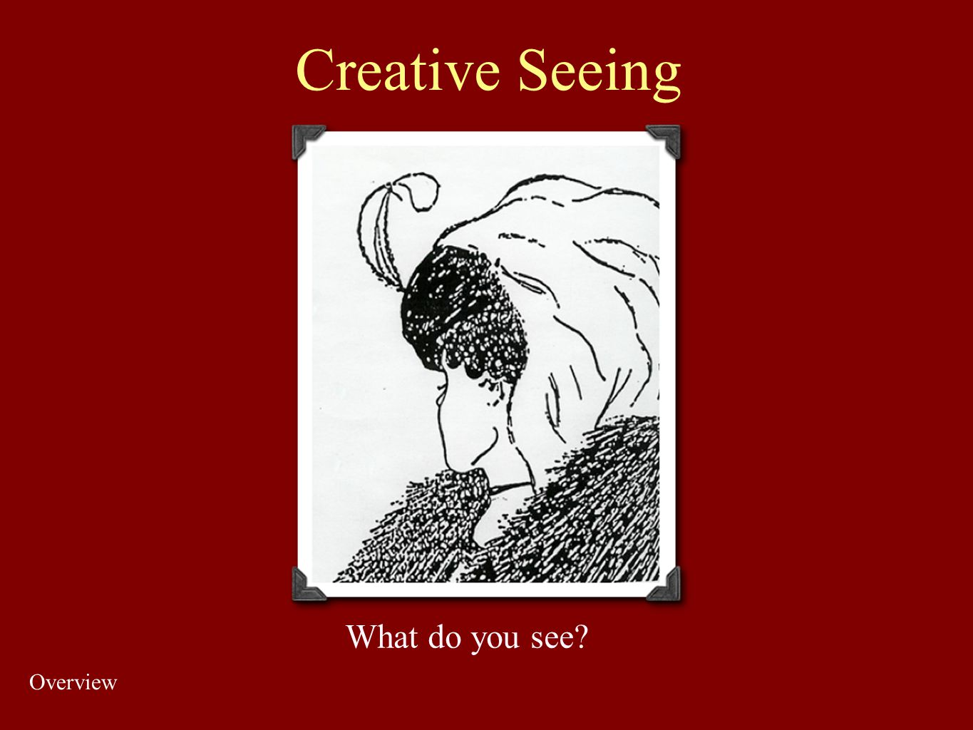 Creative Seeing What do you see Overview
