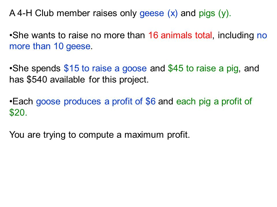 A 4-H Club member raises only geese (x) and pigs (y).