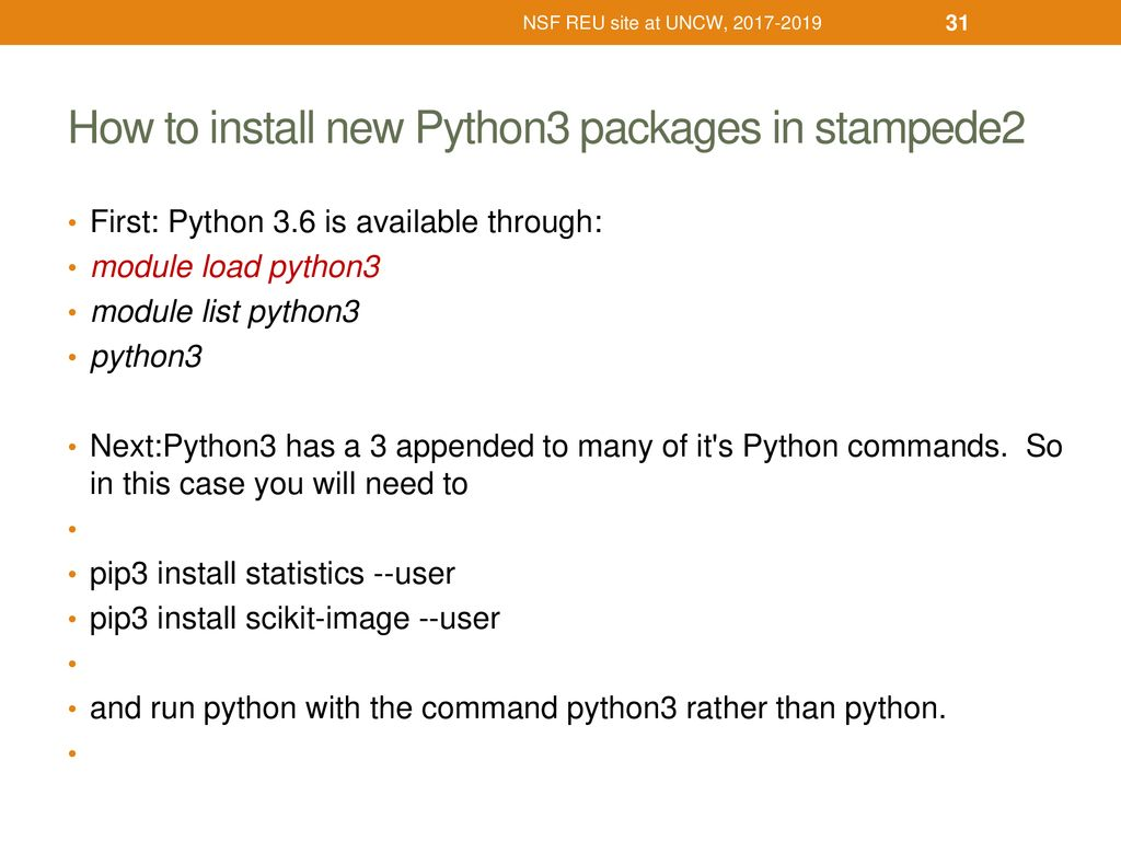 Parallel computation with R & Python on TACC HPC server