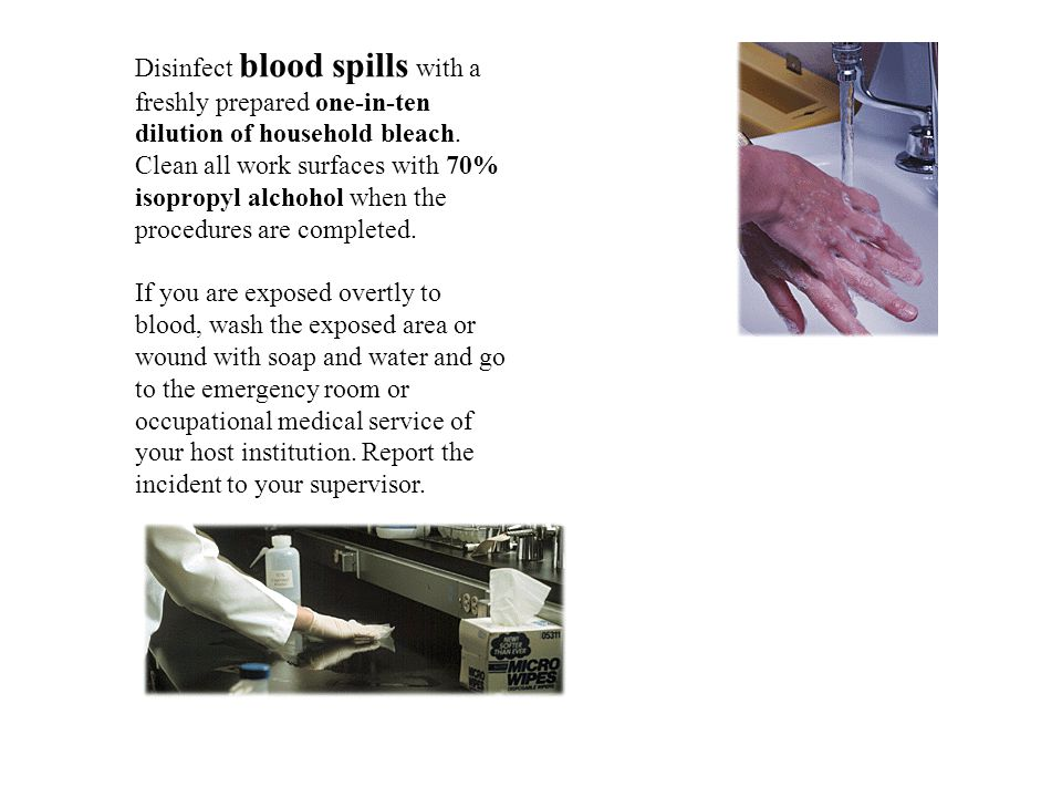 Disinfect blood spills with a freshly prepared one-in-ten dilution of household bleach.
