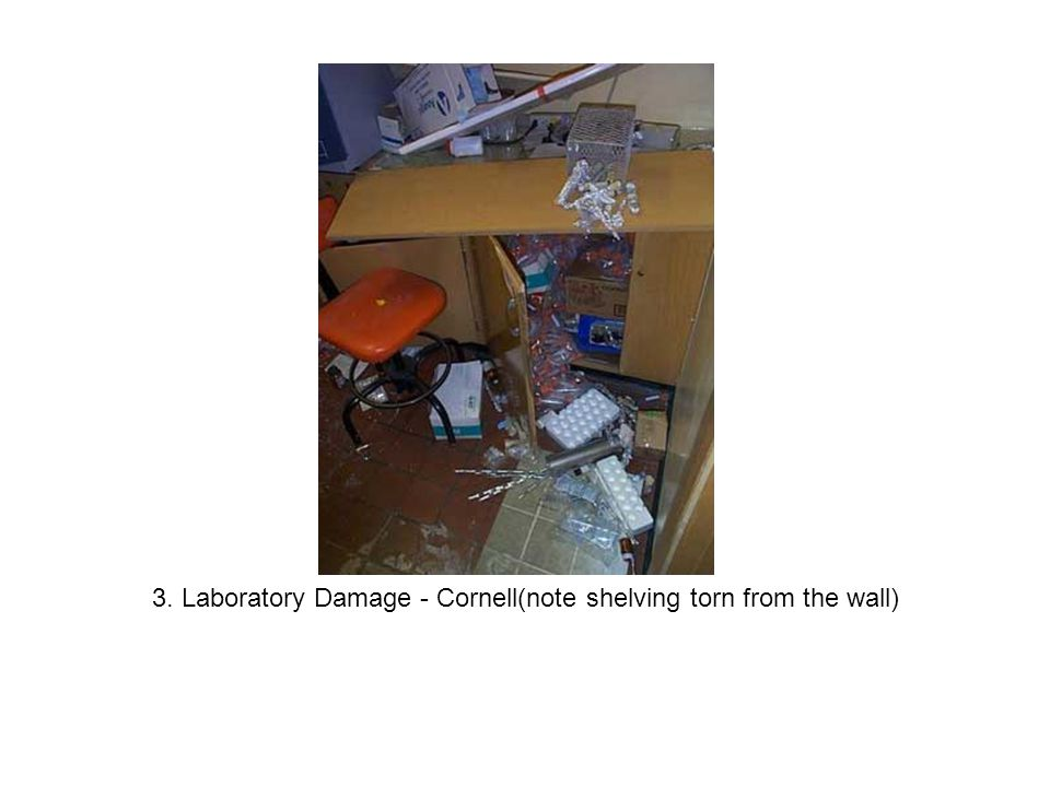 3. Laboratory Damage - Cornell(note shelving torn from the wall)