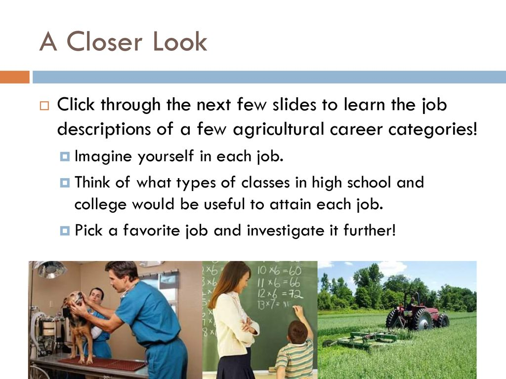 Careers In Agriculture - ppt download