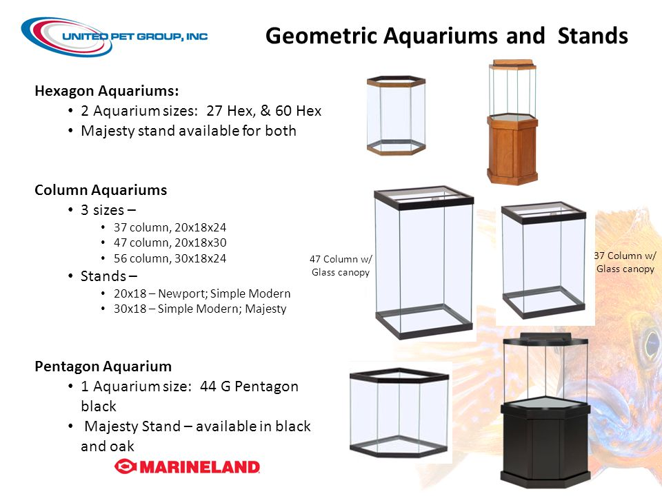 Geometric Aquariums and Stands