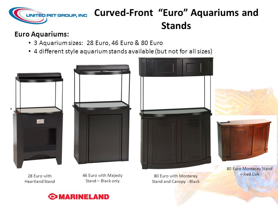 Curved-Front Euro Aquariums and Stands
