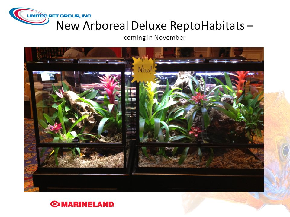 New Arboreal Deluxe ReptoHabitats – coming in November