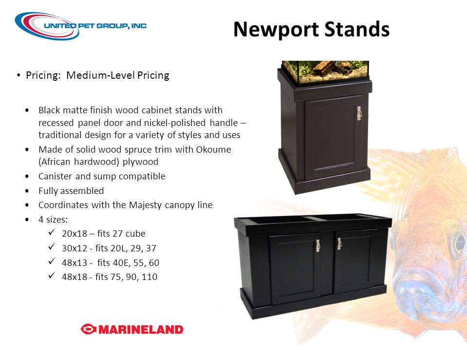 Newport Stands Pricing: Medium-Level Pricing