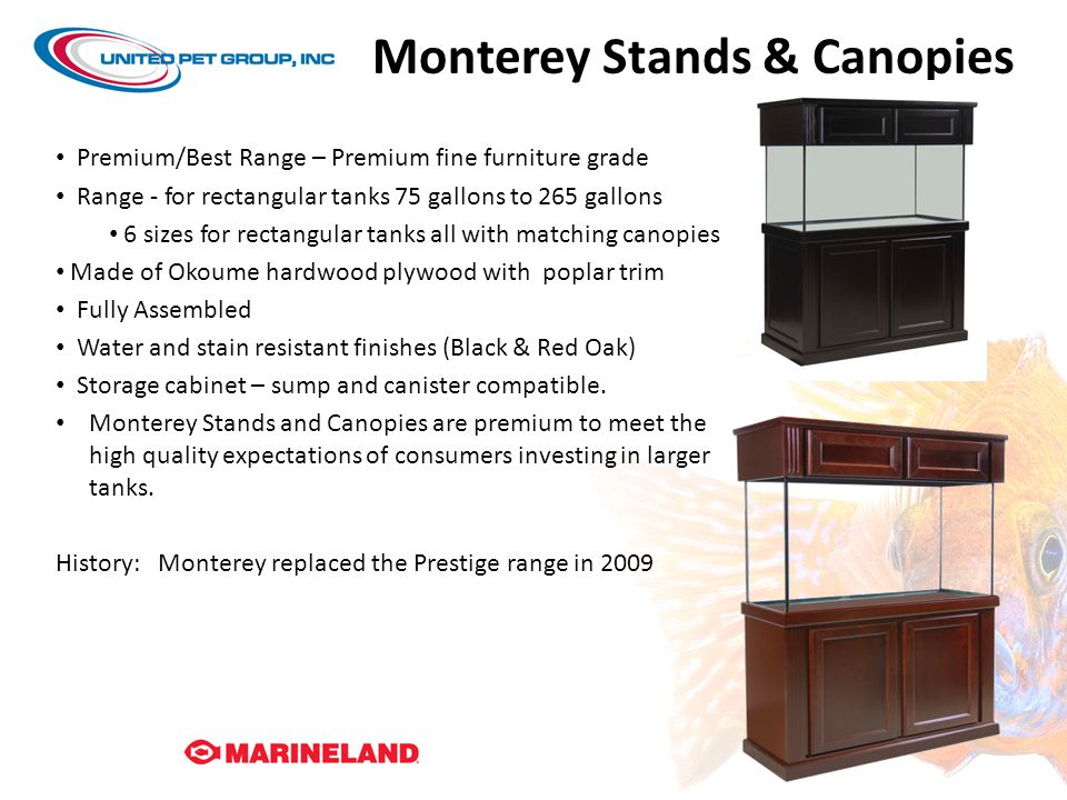 Monterey Stands & Canopies
