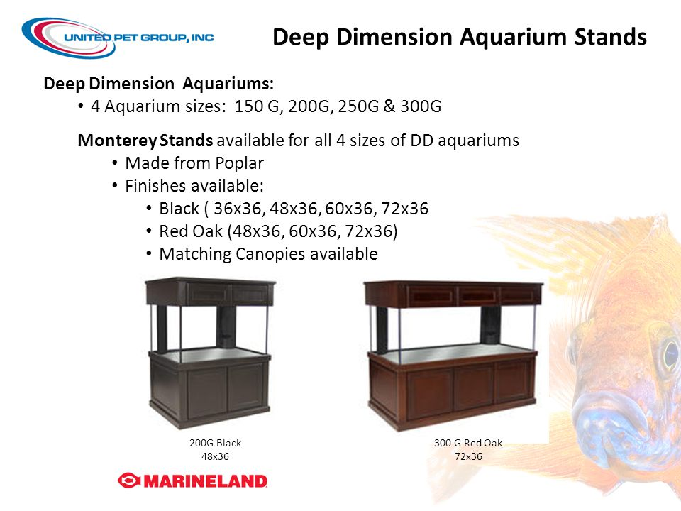 Deep Dimension Aquarium Stands