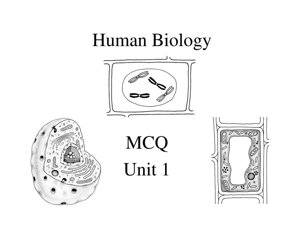 Human Biology MCQ Unit ppt download