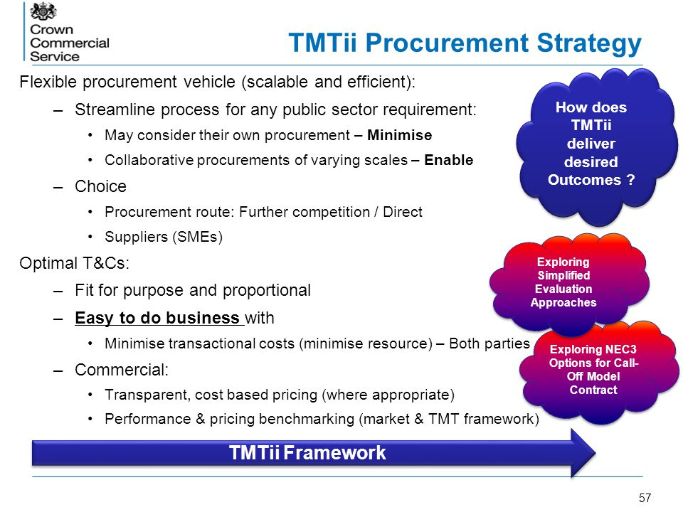 TMTii Procurement Strategy