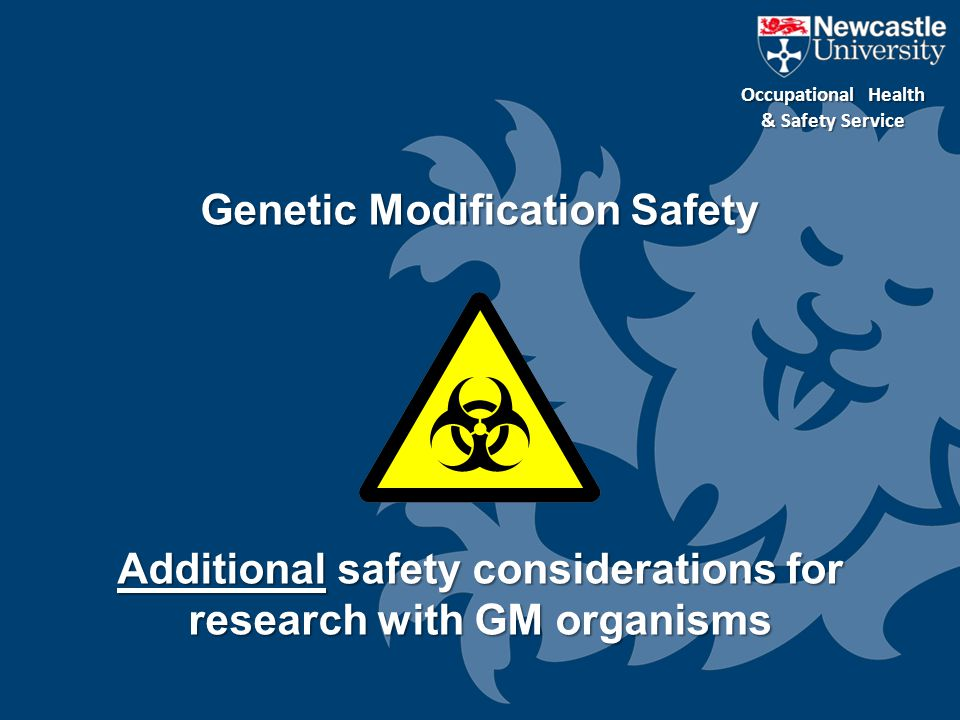 Additional safety considerations for research with GM organisms