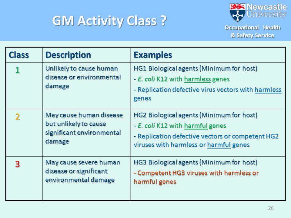 GM Activity Class Class Description Examples 1 2 3