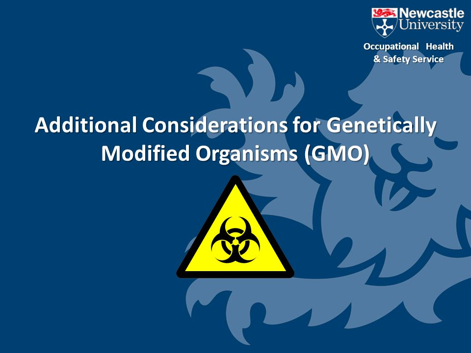 Additional Considerations for Genetically Modified Organisms (GMO)