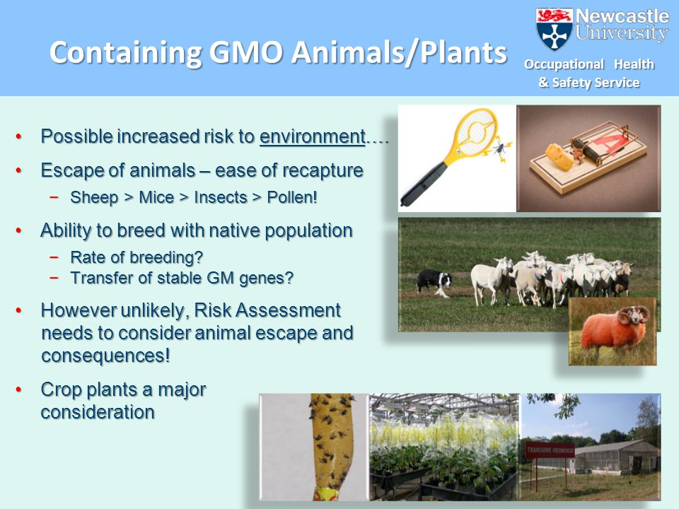 Containing GMO Animals/Plants