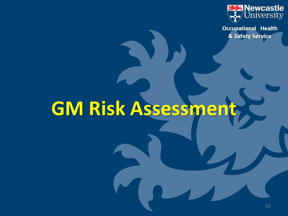 GM Risk Assessment