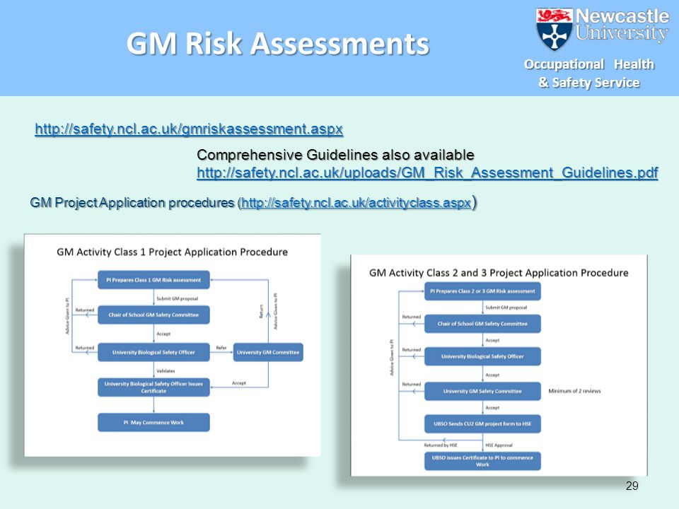 GM Risk Assessments http://safety.ncl.ac.uk/gmriskassessment.aspx