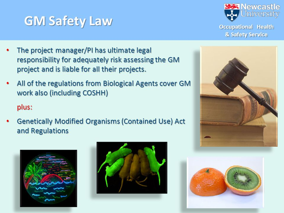 GM Safety Law