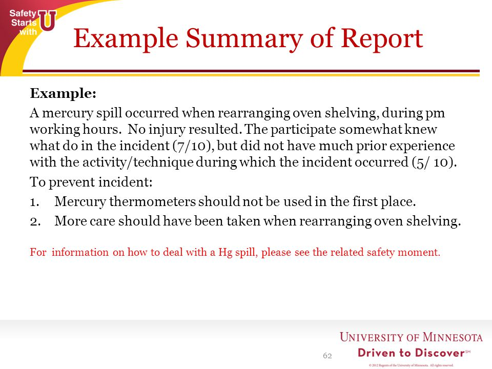 Example Summary of Report