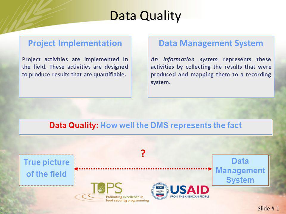 Data Quality Project Implementation Data Management System