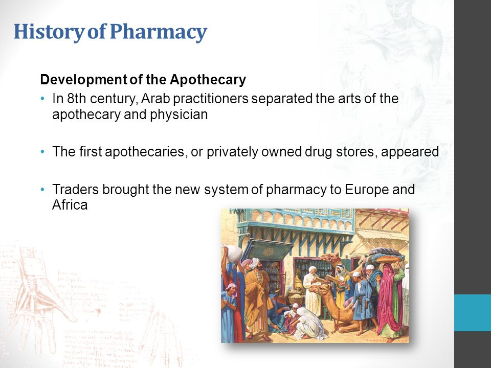 History of Pharmacy Development of the Apothecary