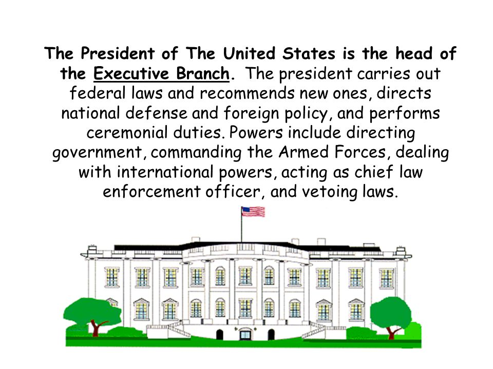 The President of The United States is the head of the Executive Branch