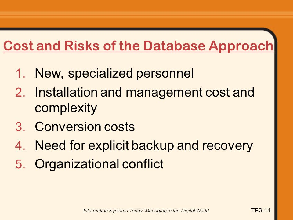 Cost and Risks of the Database Approach