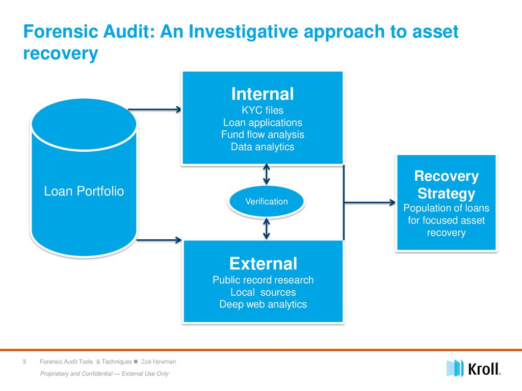 Role of Forensic Audit in Asset Recovery - ppt download