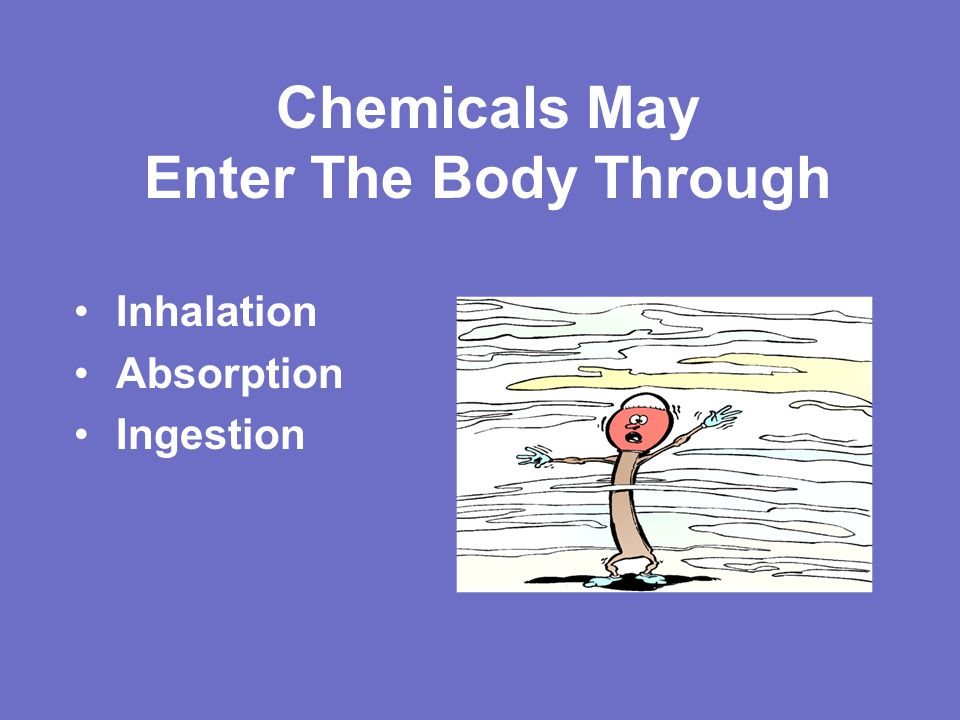 Chemicals May Enter The Body Through