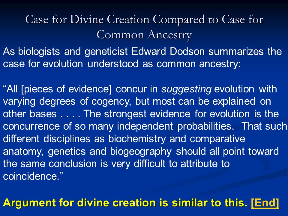Case for Divine Creation Compared to Case for Common Ancestry