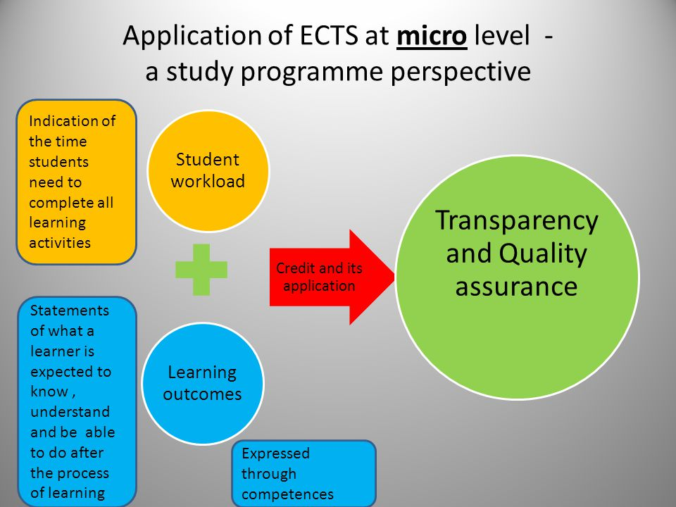 Application of ECTS at micro level - a study programme perspective