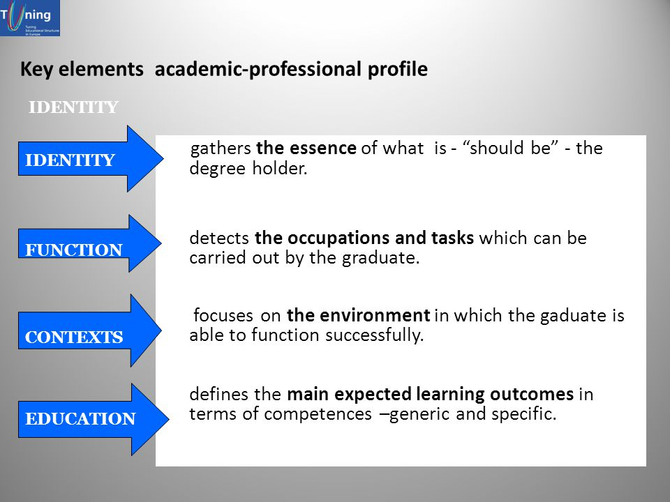 Key elements academic-professional profile