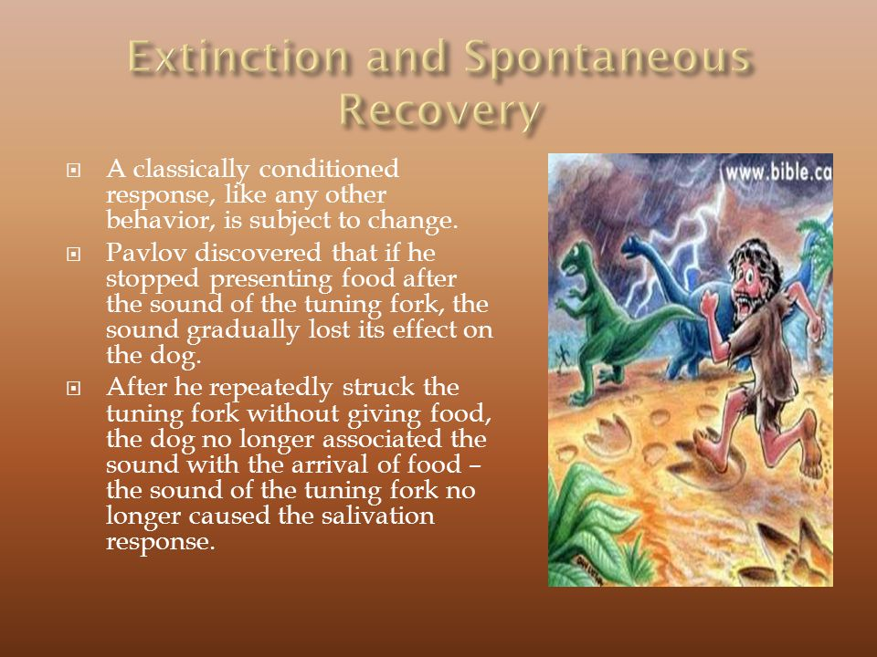 Extinction and Spontaneous Recovery