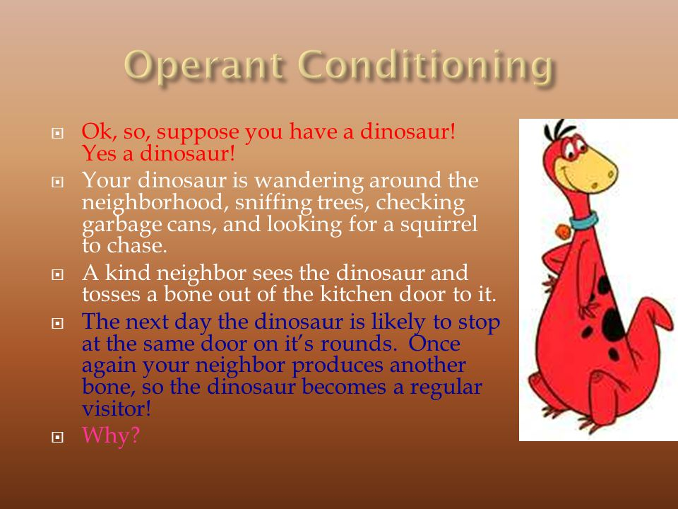 Operant Conditioning Ok, so, suppose you have a dinosaur! Yes a dinosaur!