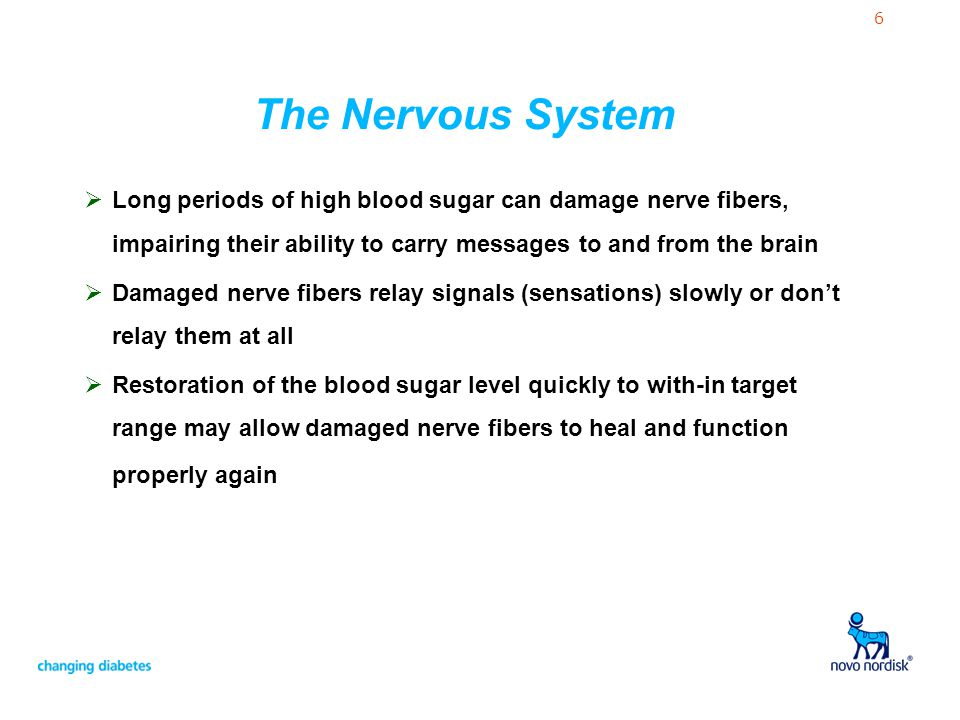 The Nervous System Long periods of high blood sugar can damage nerve fibers, impairing their ability to carry messages to and from the brain.
