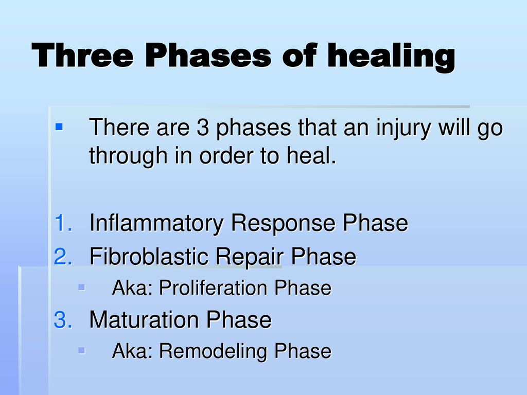 Lesson One Phases Of Soft Tissue Healing Ppt Download