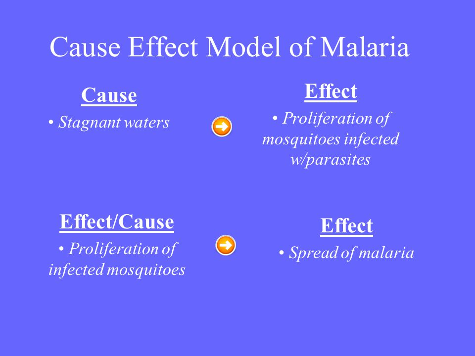 Cause Effect Model of Malaria