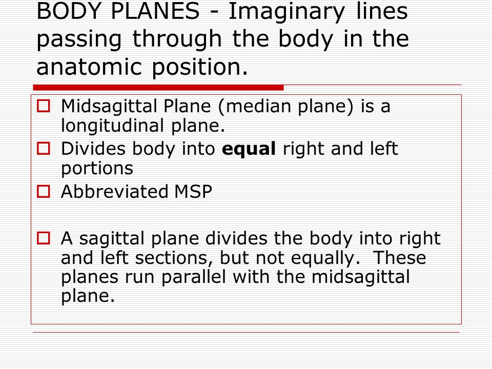 BODY PLANES - Imaginary lines passing through the body in the anatomic position.