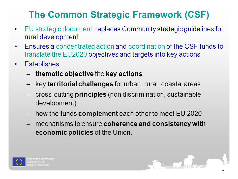 The Common Strategic Framework (CSF)