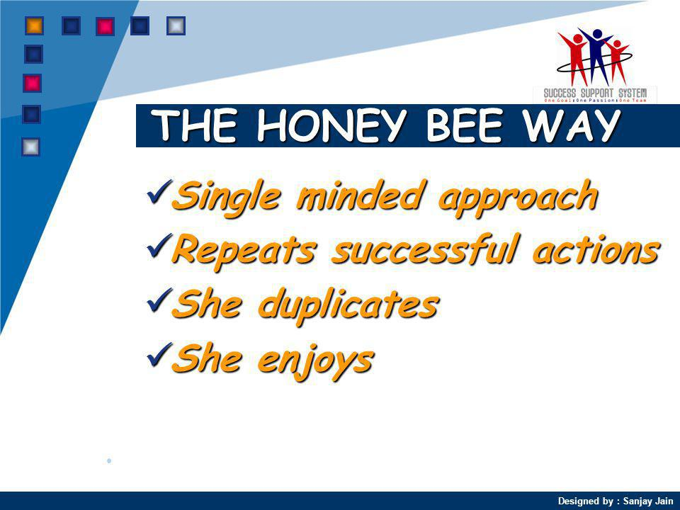 THE HONEY BEE WAY Single minded approach Repeats successful actions