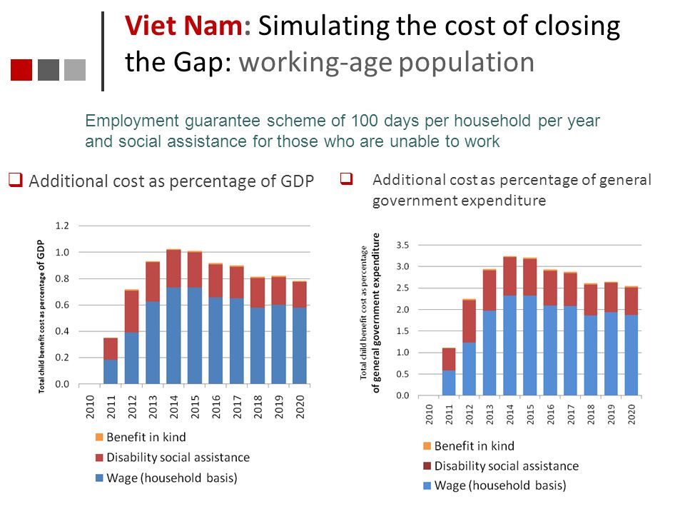 Viet Nam: Simulating the cost of closing the Gap: working-age population