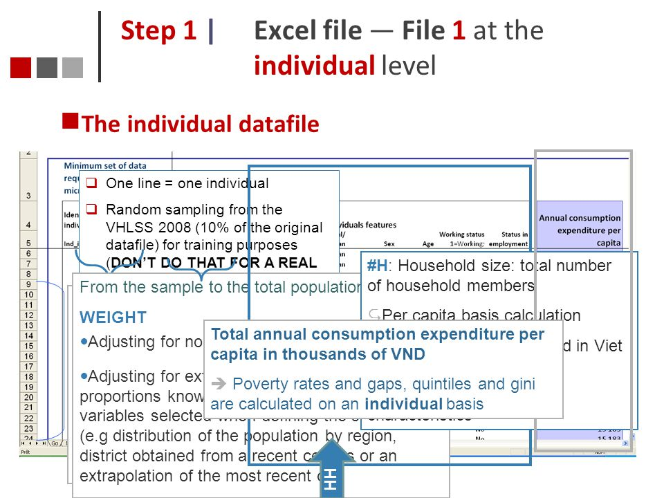 Step 1 | Excel file — File 1 at the individual level