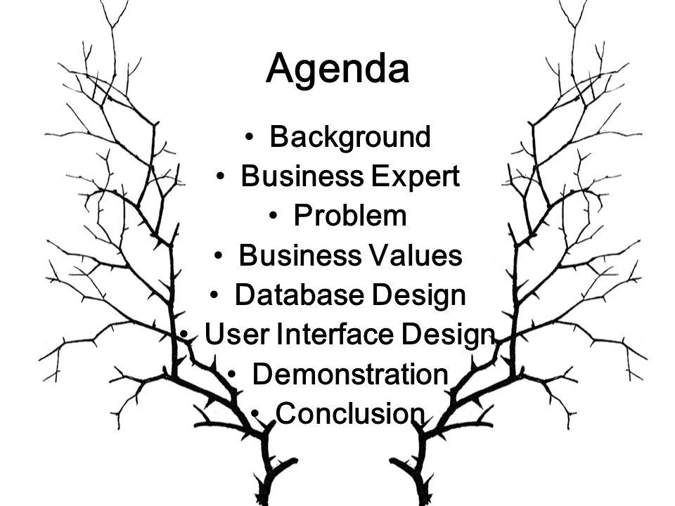 Agenda Background Business Expert Problem Business Values