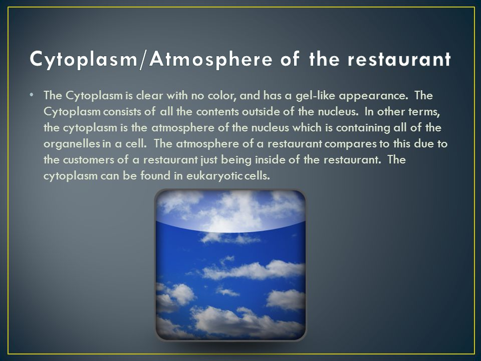 Cytoplasm/Atmosphere of the restaurant